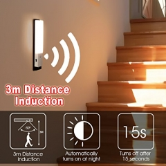 ZEEFO 2 Pack PIR Motion Sensor LED Night Light,